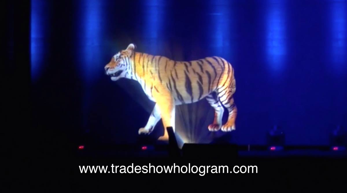 large 3D Hologram Projection